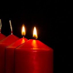 Advent Devotions: Peace