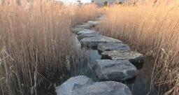 Building Blocks & Stepping Stones